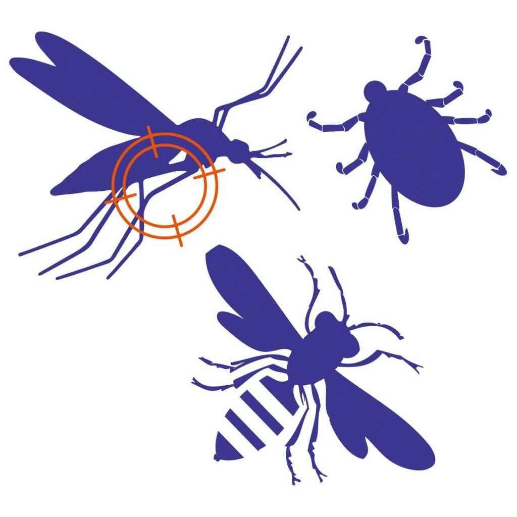 Moustique, tique et guêpe.  Cliquez sur la vignette pour télécharger le visuel